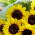 unit_img_flower04